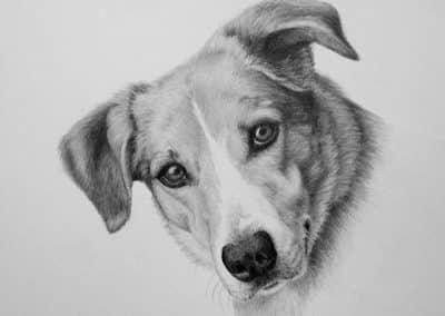 Boo Kathrin Guenther artist, memorial portrait, pet portrait