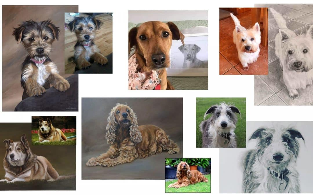 Capturing likeness and character in a pet portrait